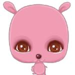 花兔直播app