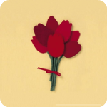 红妆直播app