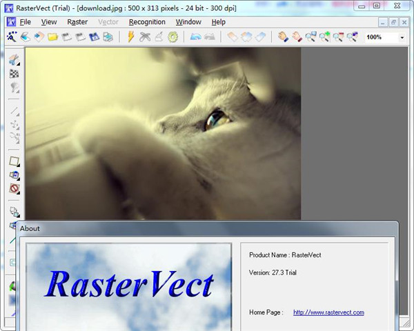 RasterVect