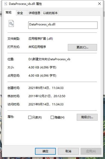 DataProcess_vb.dll文件